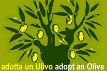 LOGO ADOTTA ULIVO2